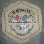 Hogwarts Cakes