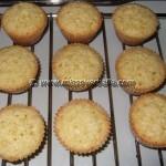 Kristins Coconut muffins